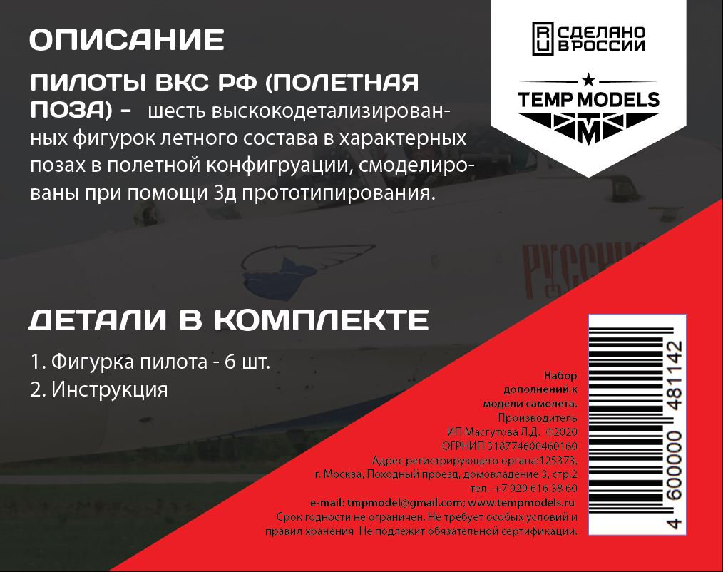 Pilots modern, Russia  Air Force, Figures, 1/48, flight position